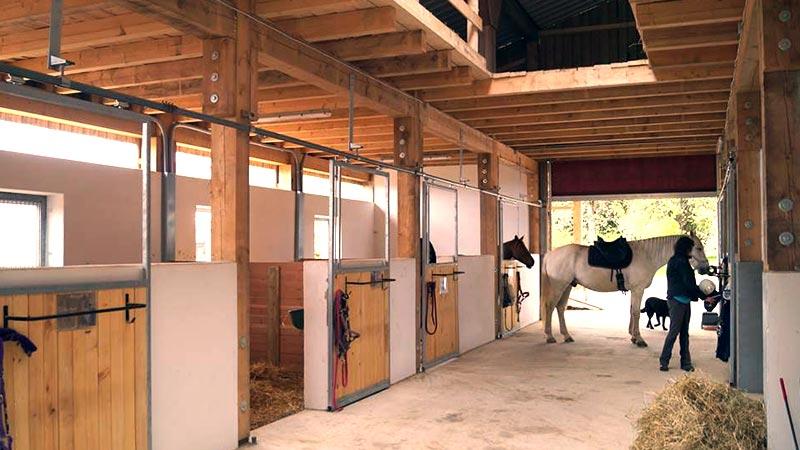 Geliebte Pferdehaltung | Dausch Hallen &QH_02